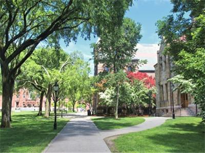 你的SAT考试成绩 申请几所美国大学最容易被录取?