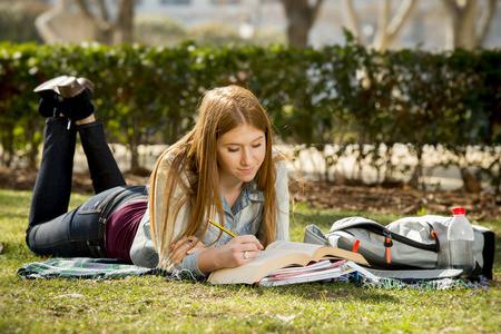 暑期托福阅读备考学习重点在哪里?热点易错题型解题策略思路分享图1