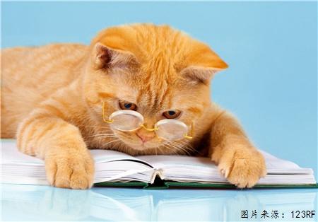 """托福阅读备考如何""""吃透""""文章 把握词汇语法和逻辑是关键图2"""