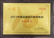 2017年度中国品牌实力教育集团
